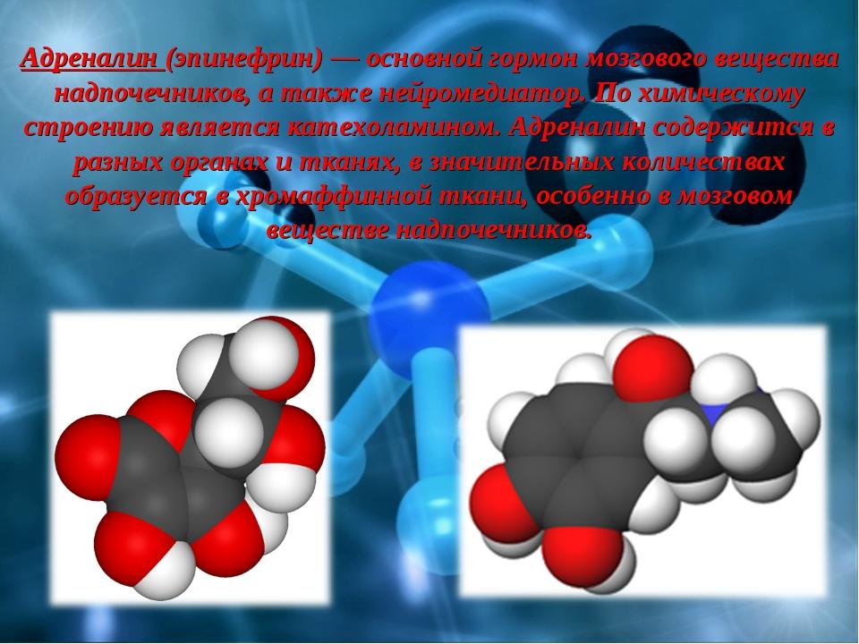 Адреналин (эпинефрин) — основной гормон мозгового вещества надпочечников, а т...