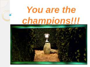 You are the champions!!!