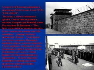 """А между тем Власова направили в концлагерь Маутхаузен, в блок № 20 - """"блок см"""