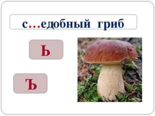 Ъ Ь с…едобный гриб