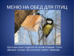 МЕНЮ НА ОБЕД ДЛЯ ПТИЦ Кусочки сала годятся не всем птицам. Сало (можно только