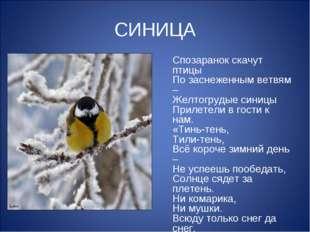 СИНИЦА Спозаранок скачут птицы По заснеженным ветвям – Желтогрудые синицы При