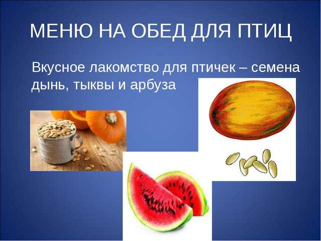 МЕНЮ НА ОБЕД ДЛЯ ПТИЦ Вкусное лакомство для птичек – семена дынь, тыквы и арб...