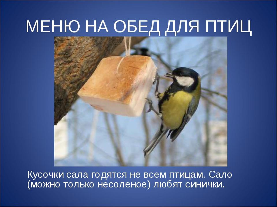 МЕНЮ НА ОБЕД ДЛЯ ПТИЦ Кусочки сала годятся не всем птицам. Сало (можно только...