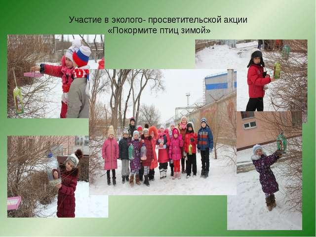 Участие в эколого- просветительской акции «Покормите птиц зимой»