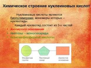 Химическое строение нуклеиновых кислот Нуклеиновые кислоты являются биополиме