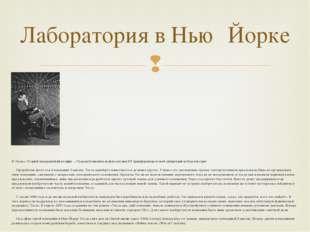 Н. Тесла с «Теорией натуральной философии…» Руджера Бошковича на фоне катушк