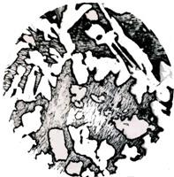 Копия Копия File0391