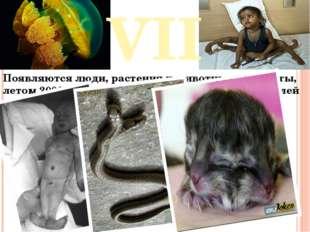 VII Появляются люди, растения и животные – мутанты, летом 2006 года сообщалос