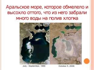 Аральское море, которое обмелело и высохло оттого, что из него забрали много