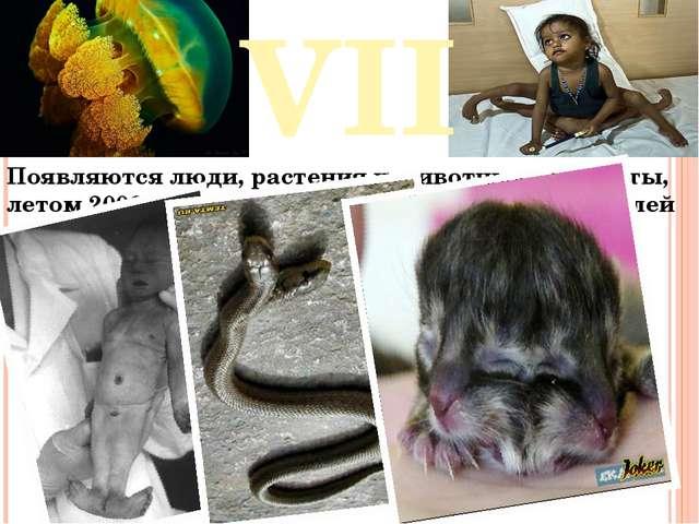 VII Появляются люди, растения и животные – мутанты, летом 2006 года сообщалос...