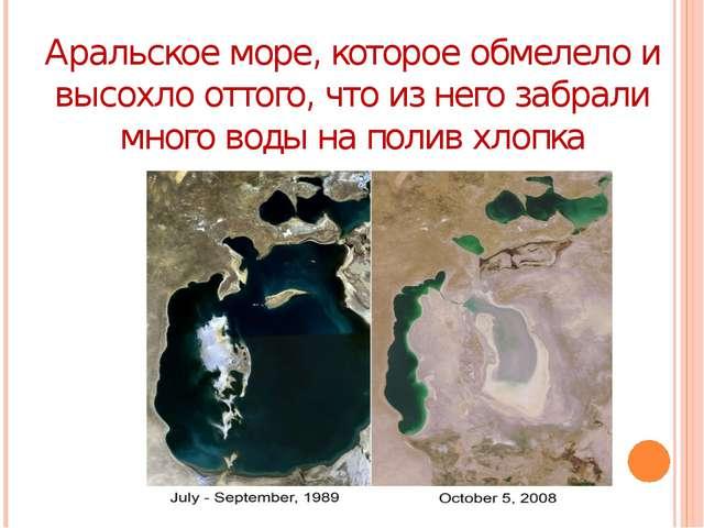 Аральское море, которое обмелело и высохло оттого, что из него забрали много...