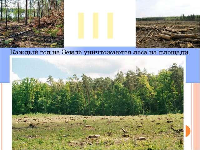 III Каждый год на Земле уничтожаются леса на площади 11 млн. гектаров.