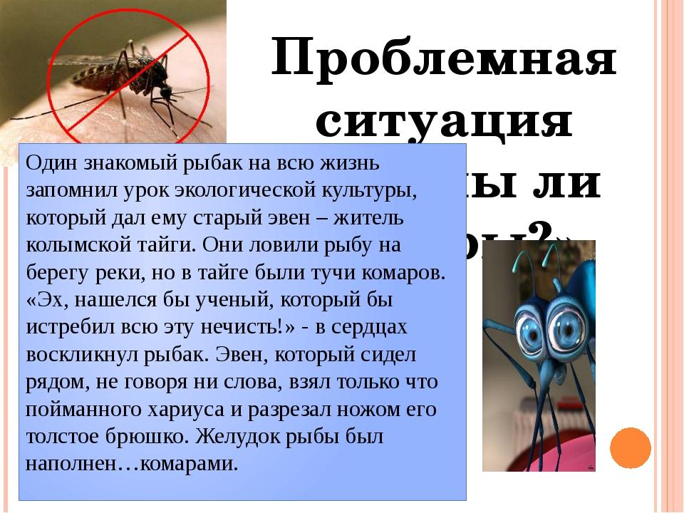 Проблемная ситуация «Нужны ли комары?» Один знакомый рыбак на всю жизнь запом...