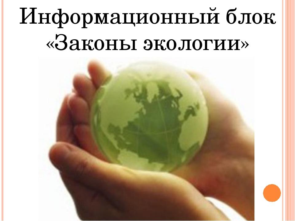 Информационный блок «Законы экологии»