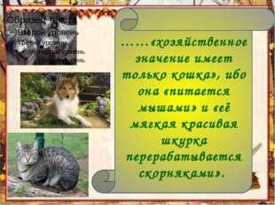 ……«хозяйственное значение имеет только кошка», ибо она «питается мышами» и «е