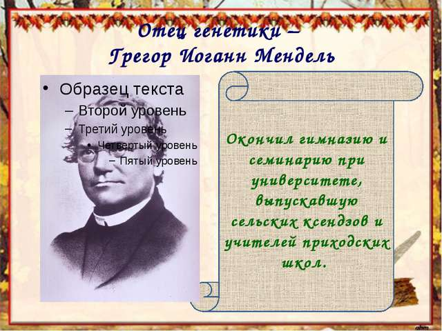 Отец генетики – Грегор Иоганн Мендель Окончил гимназию и семинарию при универ...