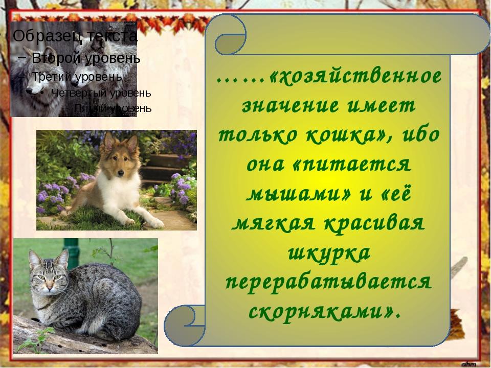 ……«хозяйственное значение имеет только кошка», ибо она «питается мышами» и «е...