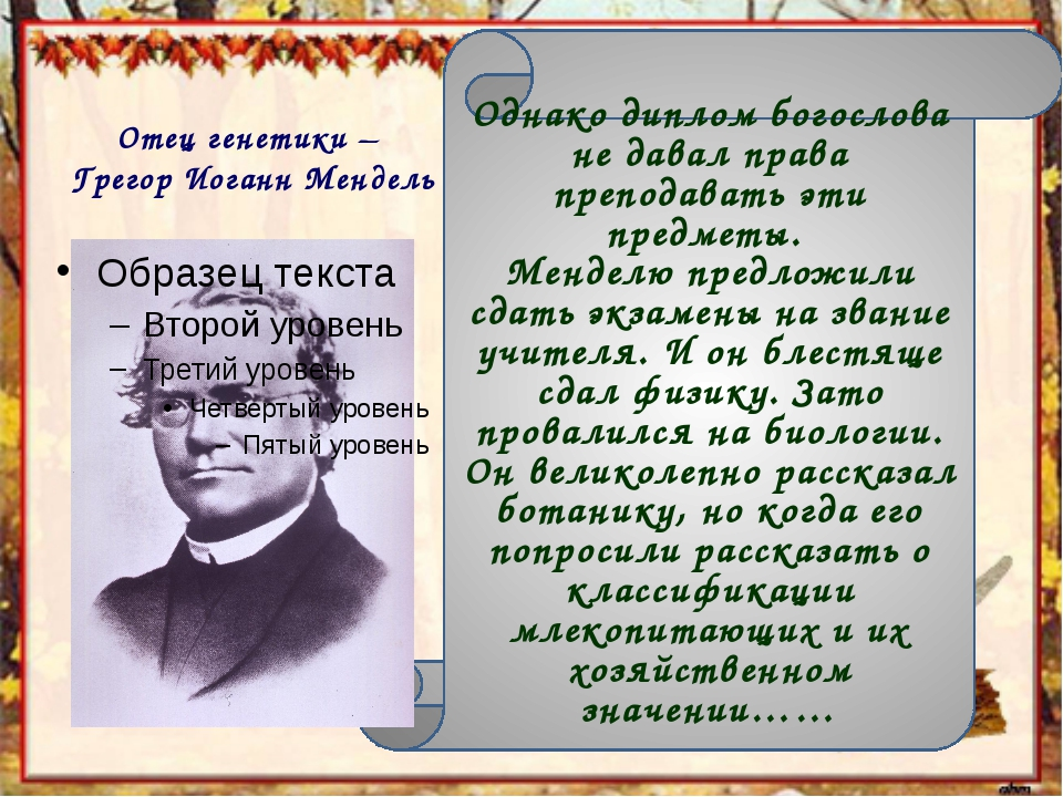 Отец генетики – Грегор Иоганн Мендель Однако диплом богослова не давал права...