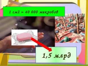 1 см2 = 40 000 микробов 1,5 млрд