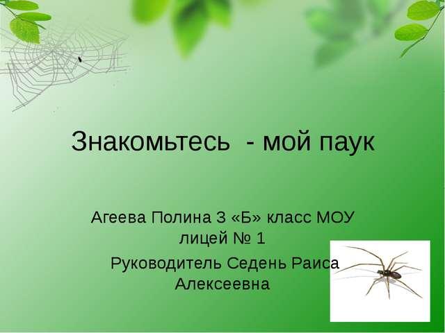 Знакомьтесь - мой паук Агеева Полина 3 «Б» класс МОУ лицей № 1 Руководитель С...