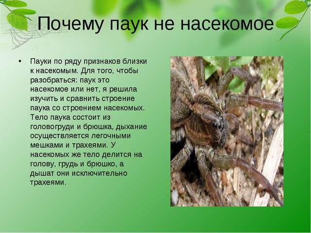 Почему паук не насекомое Пауки по ряду признаков близки к насекомым. Для того...