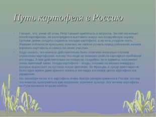 Путь картофеля в Россию Говорят, что, узнав об этом, Петр I решил прибегнуть