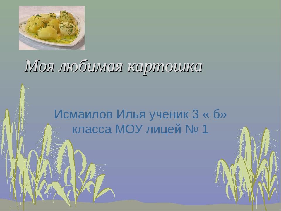 Моя любимая картошка Исмаилов Илья ученик 3 « б» класса МОУ лицей № 1