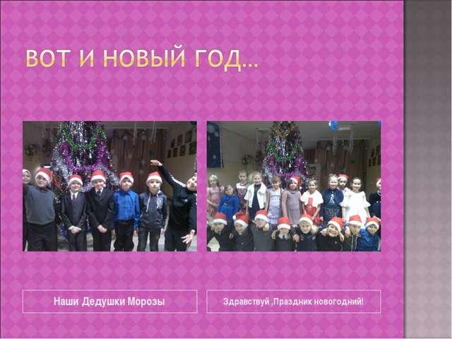 Наши Дедушки Морозы Здравствуй ,Праздник новогодний!