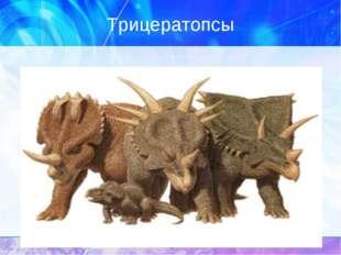 Трицератопсы