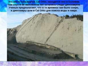Это место называется Cal Orko, находится оно в Боливии. Там спустя 68 миллион