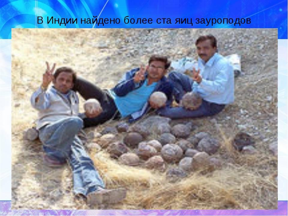 В Индии найдено более ста яиц зауроподов