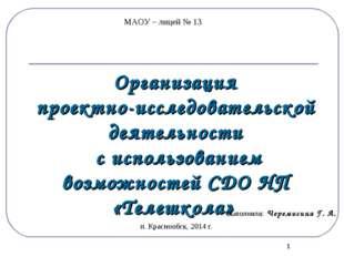 * Организация проектно-исследовательской деятельности с использованием возмож
