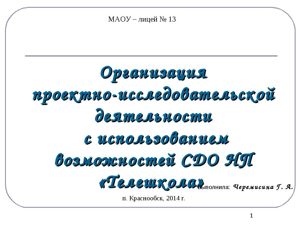 * Организация проектно-исследовательской деятельности с использованием возмож...