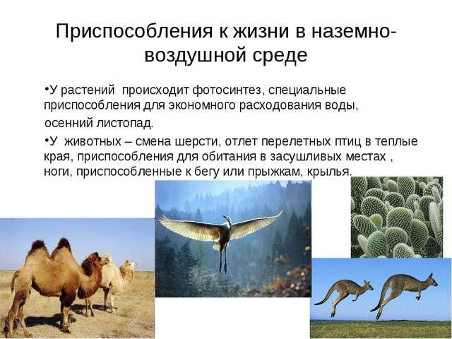 Приспособления к жизни в наземно-воздушной среде У растений происходит фотоси...