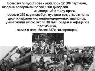 Всего на полуострове сражалось 12500 партизан, которые совершили более 1600