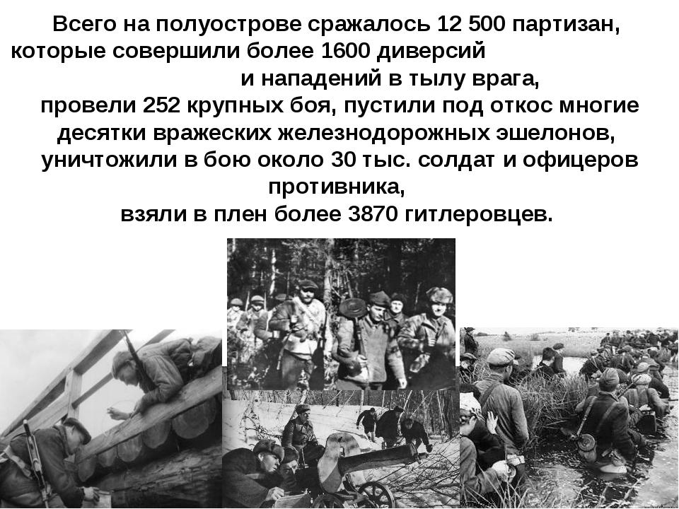 Всего на полуострове сражалось 12500 партизан, которые совершили более 1600...