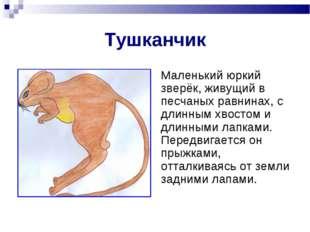 Тушканчик Маленький юркий зверёк, живущий в песчаных равнинах, с длинным хвос