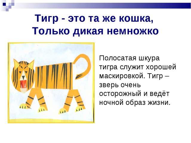 Тигр - это та же кошка, Только дикая немножко Полосатая шкура тигра служит хо...
