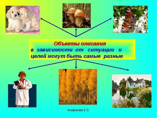 Агафонова Е.Е. Объекты описания в зависимости от ситуации и целей могут быть...