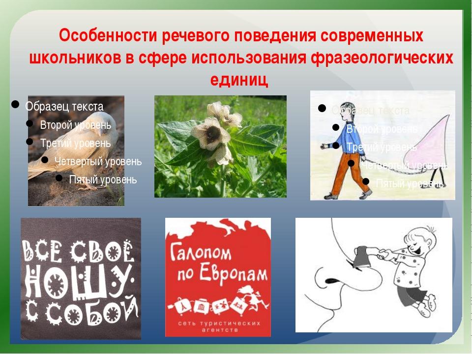 Особенности речевого поведения современных школьников в сфере использования ф...