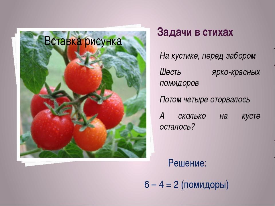 Задачи в стихах На кустике, перед забором Шесть ярко-красных помидоров Потом...