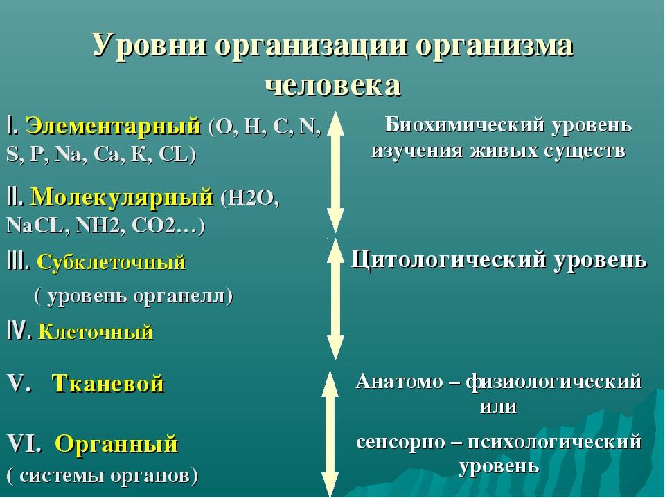Уровни организации организма человека
