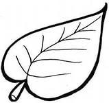 07.10.2013г. - 11.10.2013г. - Форум
