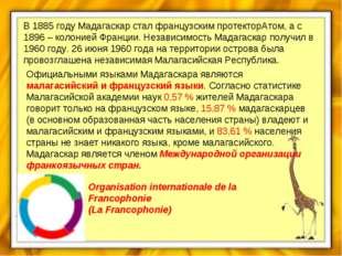 В 1885 году Мадагаскар стал французским протекторАтом, а с 1896 – колонией Фр