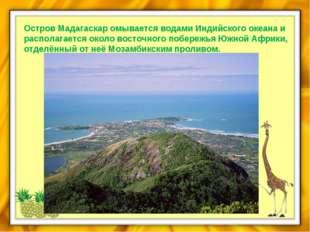 Остров Мадагаскар омывается водами Индийского океана и располагается около во