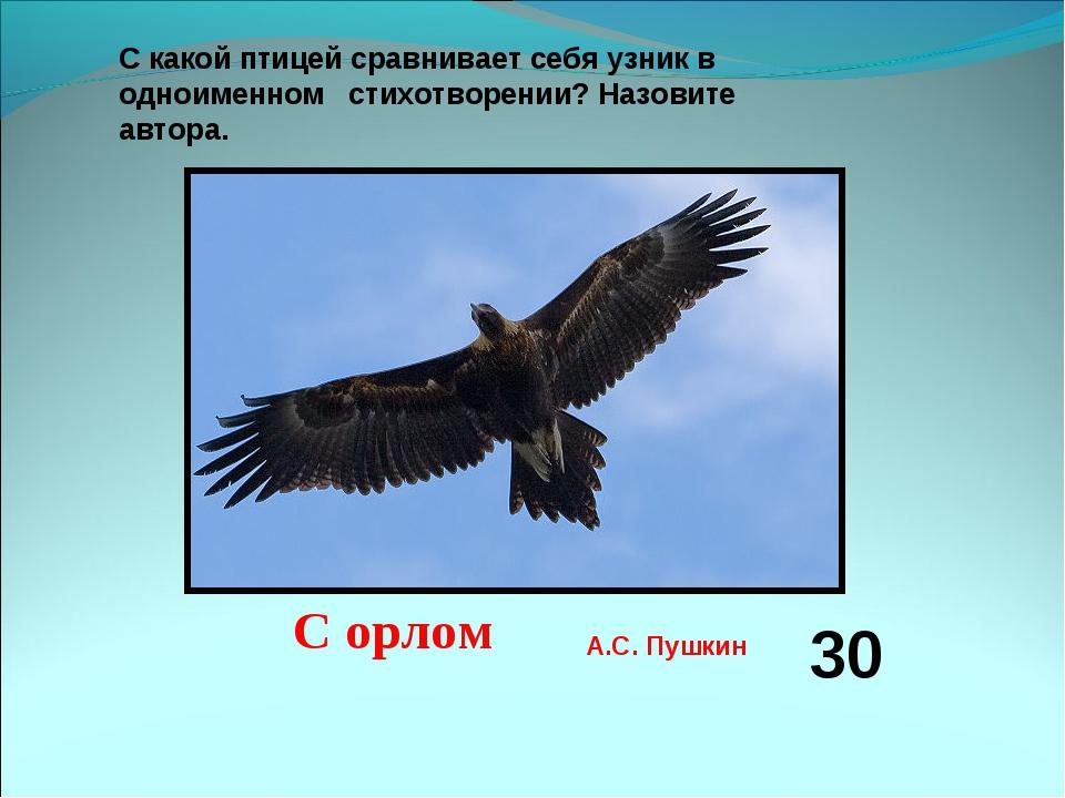 «Мы вольные птицы; пора, брат, пора! Туда, где за тучей белеет гора, Туда,...