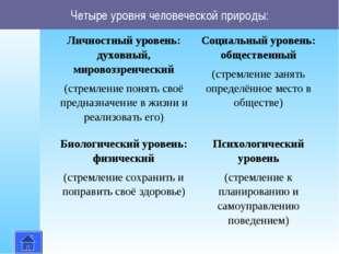 Четыре уровня человеческой природы: Личностный уровень: духовный, мировоззрен