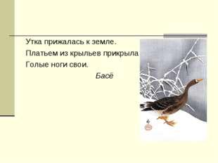 Утка прижалась к земле. Платьем из крыльев прикрыла Голые ноги свои. Басё