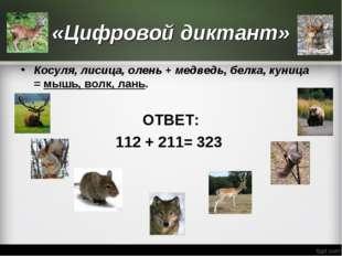 «Цифровой диктант» Косуля, лисица, олень +медведь, белка, куница =мышь, вол